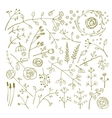 Field Flowers and Plants Decoration Collection vector image