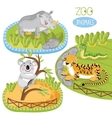 Set of animals vector image