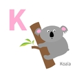 Letter K Koala Zoo alphabet English abc with vector image