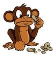 cartoon monkey with peanuts vector image