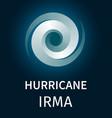 graphic banner of hurricane irma vector image