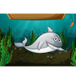 Shark fish and a bench vector image vector image