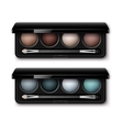 Set of MultiColored Eye Shadows Makeup Applicator vector image