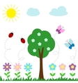 Set of butterflies flowers and ladybugs vector image