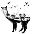 alpaca for your design vector image