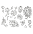 Set of ink hand drawn stylized flowers vector image vector image