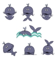 Cartoon whales vector image