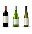 Collection of different wine bottles template vector image