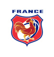 rugby rooster mascot france vector image vector image