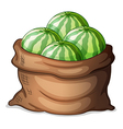 A sack of fresh watermelons vector image