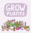 Grow plants vector image vector image