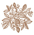 cocoa beans chocolate cocoa beans vector image