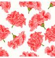 seamless texture pink hibiscus cracks vintage vector image