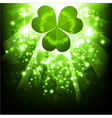 St Patrick's's holiday night background vector image