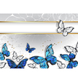Narrow Banner with Butterflies Morpho vector image