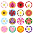 Flower Collection Set vector image vector image