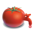 Fresh tomato tap juice drops vector image