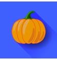 Orange Pumpkin Icon Isolated vector image