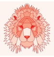 Orange low poly lined lion vector image