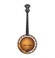 A Beautiful Brown Banjo on White Background vector image vector image