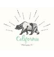 California Republic emblem drawn sketch vector image