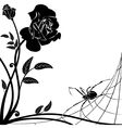 rose and spider vector image vector image