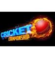 Fiery cricket ball vector image