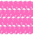 flamingo shadows silhouette in lines pink pattern vector image