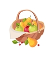 Fresh Garden Fruit Harvest In Wicker Picnic Basket vector image