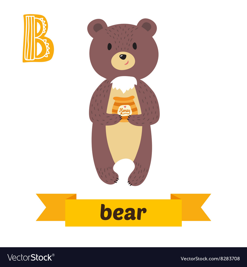 Bear b letter cute children animal alphabet in vector