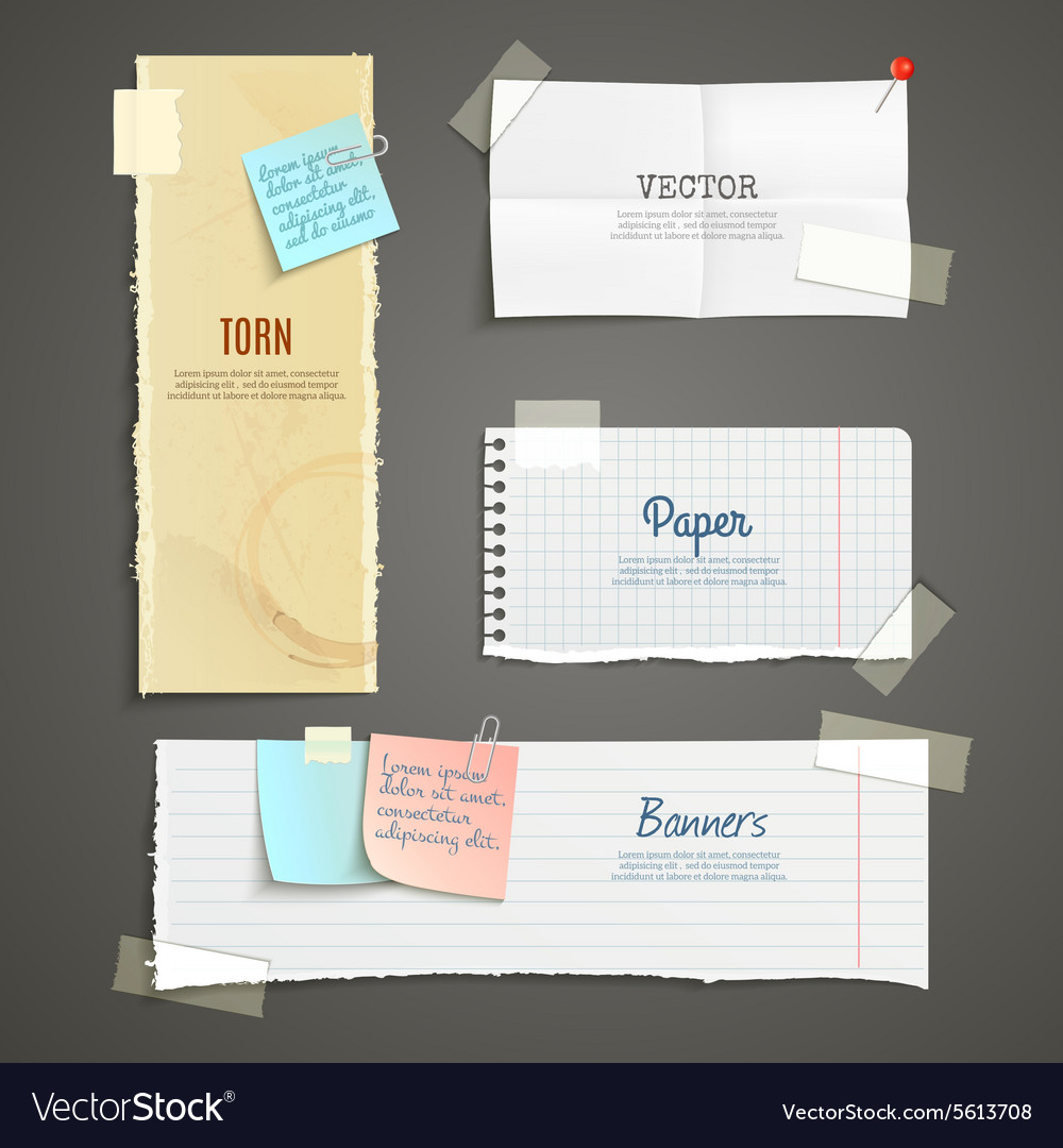 Torn paper banner set vector