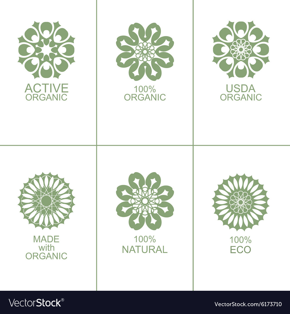 Set of natural organic eco badges and labels vector