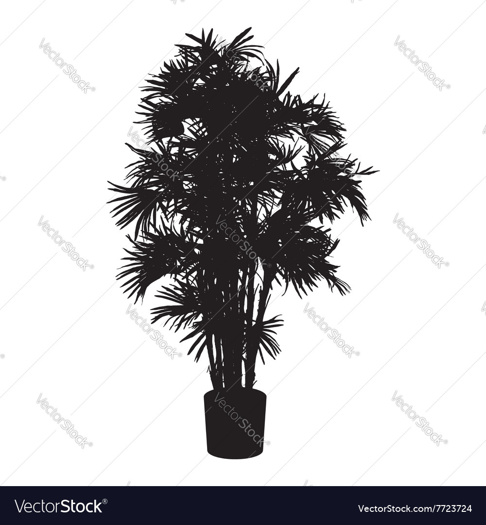 Office and house palm tree silhouette vector