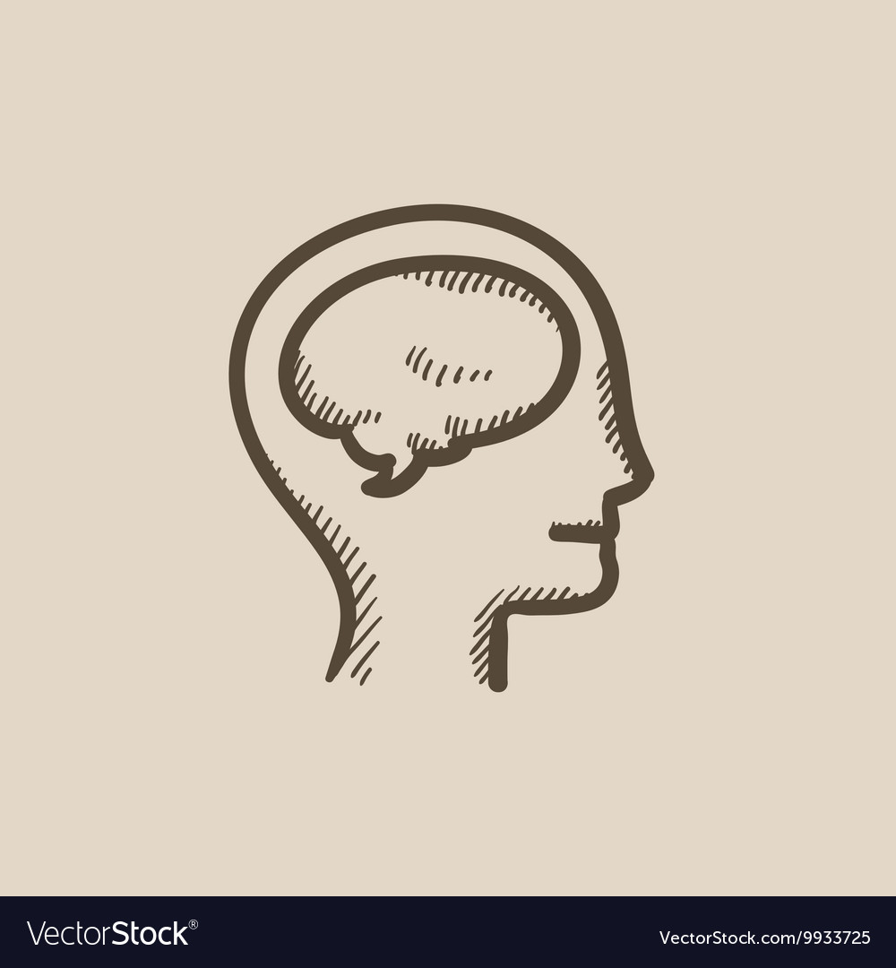 Human head with brain sketch icon vector