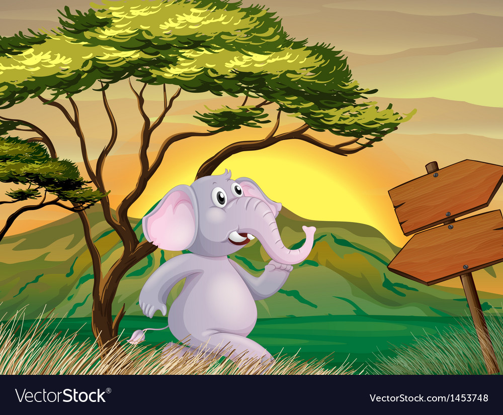 An elephant following the arrow signboards vector