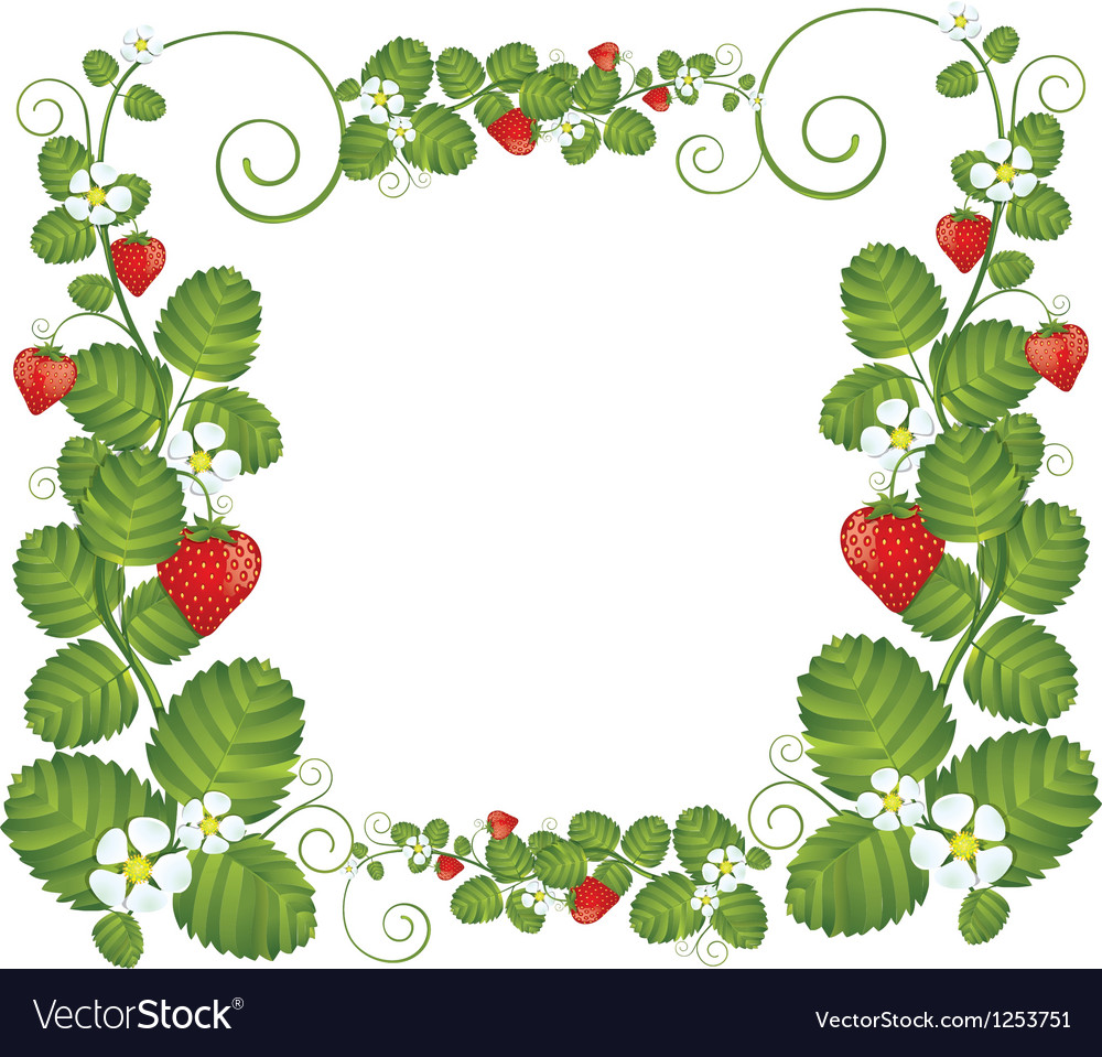 Strawberry floral frame vector