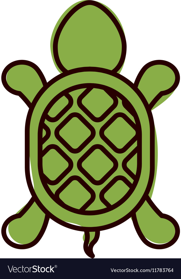 Silhouette with turtle shape animal color vector