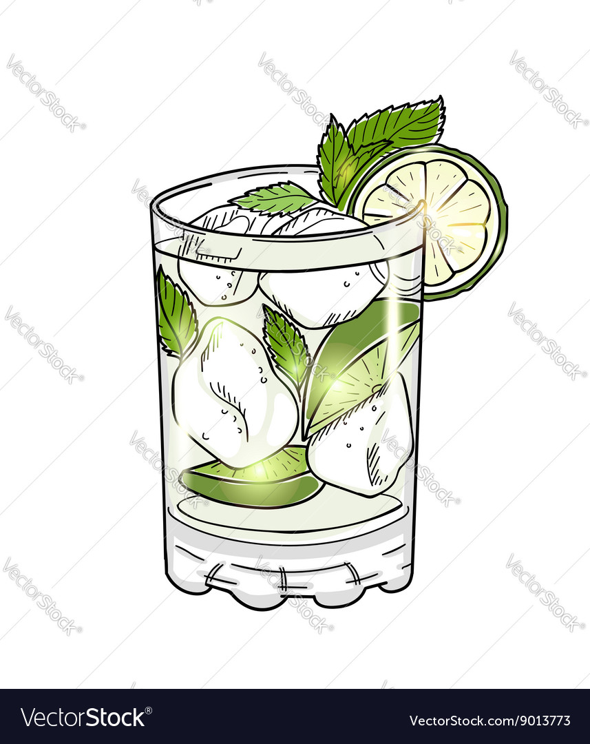 Hand drawn mojito cocktail isolated on white vector