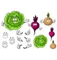 Cute cartoon cabbage beet onion vegetable vector image