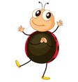 Cartoon ladybird vector image