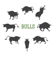 Idle and Moving Bulls vector image