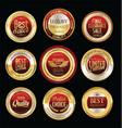 luxury golden retro badges collection 03 vector image