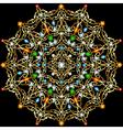 background circular ornaments vector image