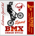 bmx t-shirt graphics extreme bike street style - vector image