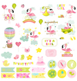 Baby Girl Flamingo Scrapbook Set vector image vector image
