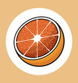 half orange healthy fresh image vector image