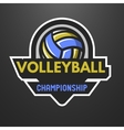 Volleyball sports logo label emblem vector image