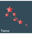 Taurus Zodiac Sign of the Beautiful Bright Stars vector image vector image