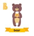 Bear B letter Cute children animal alphabet in vector image