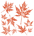 Vintage maple leafs pack vector image